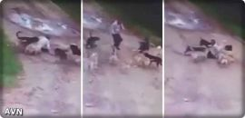 SAG Awards 2019 et Art Stars in Crazy Captures d'écran